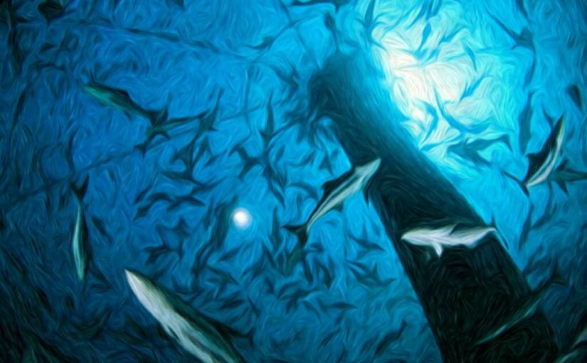 Laut Belit